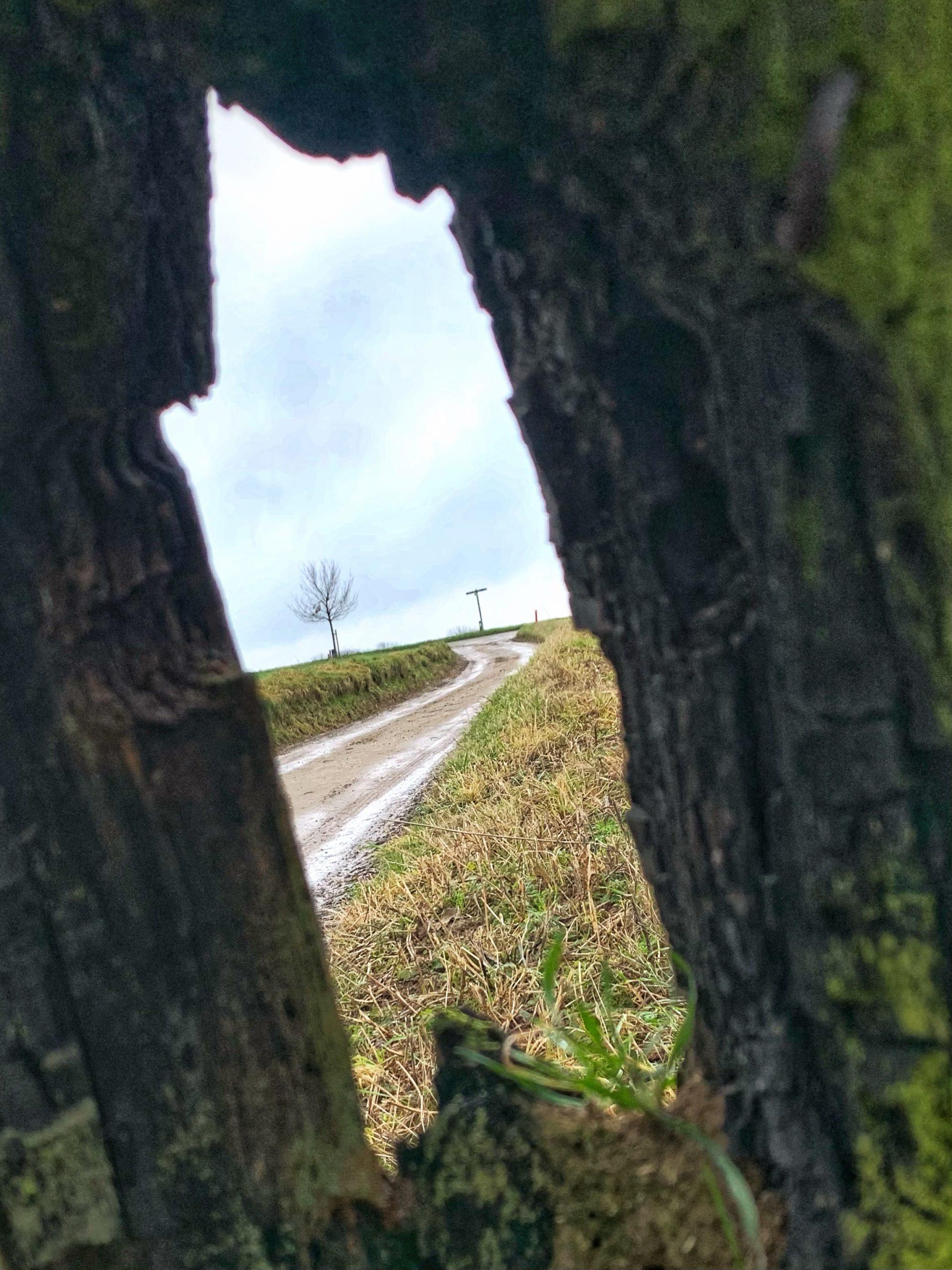 cammino della fortuna dag 6 natuur als spiegel