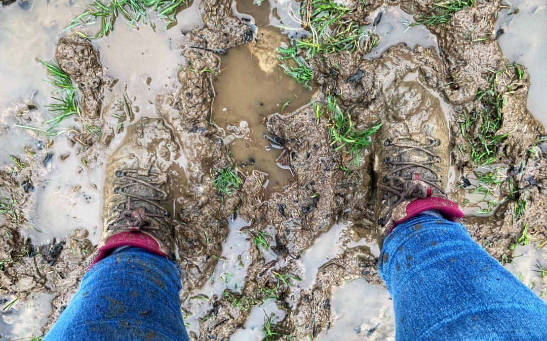 cammino della fortuna dag 12 glibberen door de modder