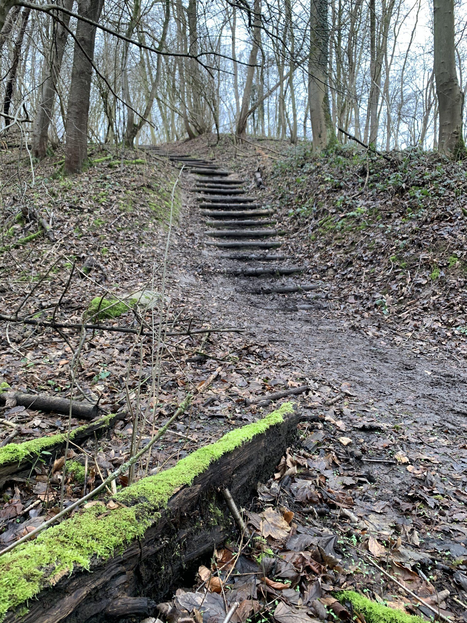 cammino della fortuna dag 26 je doel halen stap voor stap