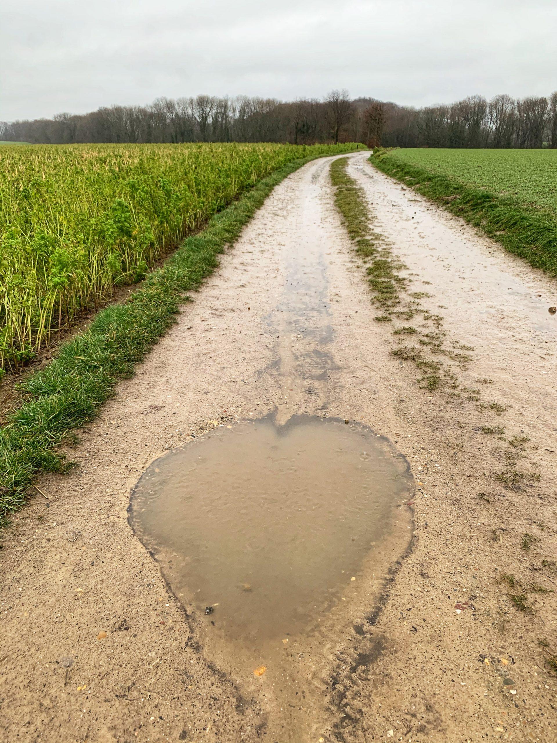 cammino della fortuna dag 28 liefde voor jezelf