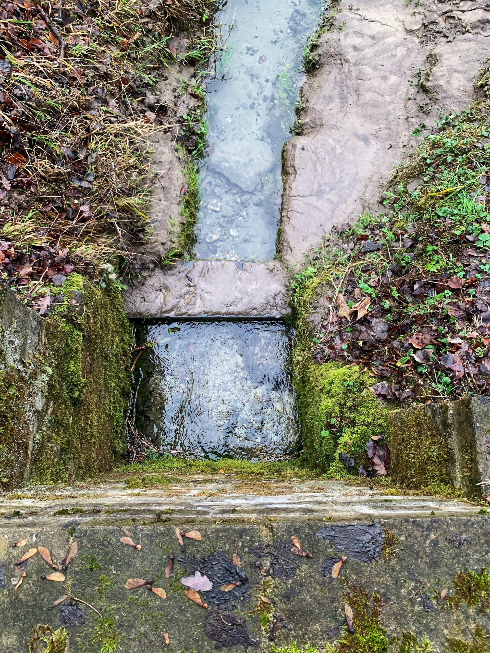cammino della fortuna dag 31 terug naar de bron