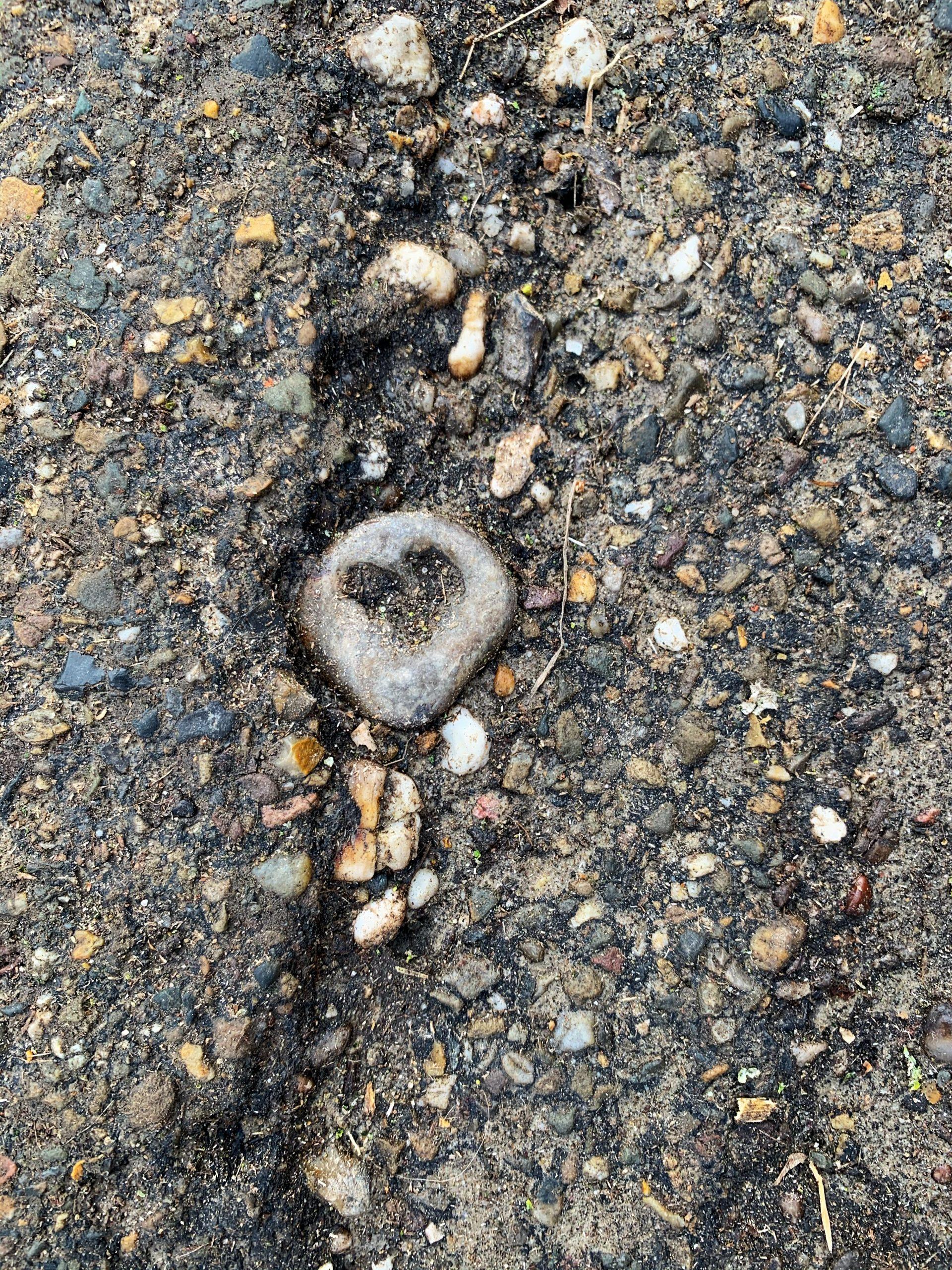 cammino della fortuna love is all around